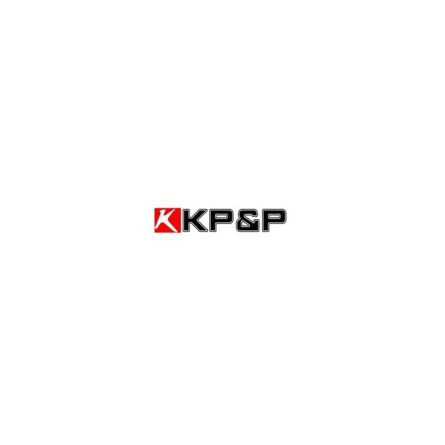 CASCO ELECTRONICO TKD KP&P